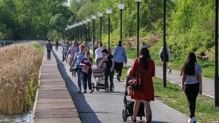 Карта заражений: в Сарове поставили рекорд по числу заболевших, Дзержинск продолжает рост