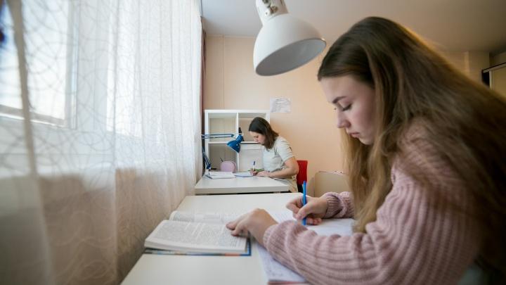 «Кто-то жалеет, кто-то восхищается»: многодетная мама сделала детей отличниками на домашнем обучении