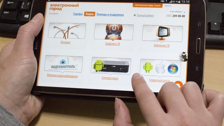 Новосибирцы пожаловались на сбои в работе «Электронного города»
