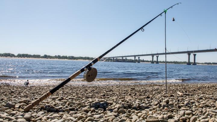 «А если он завтра принесет инфекцию?»: изолированным от коронавируса волгоградцам запретили ходить на рыбалку