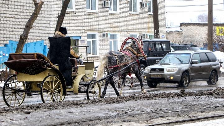 Оттепель и скачок атмосферного давления: погода в Нижнем Новгороде в выходные