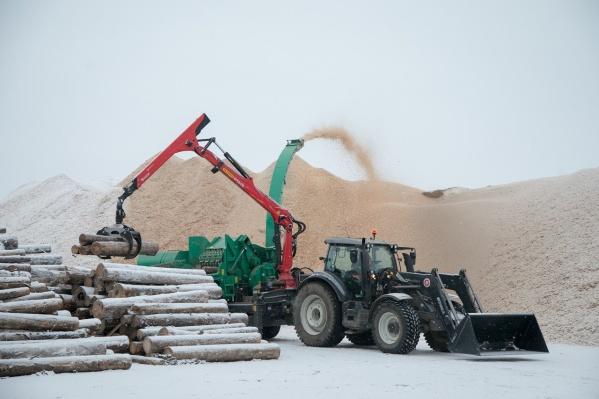 Новые технологии позволяют из отходов при лесозаготовке производить топливные гранулы