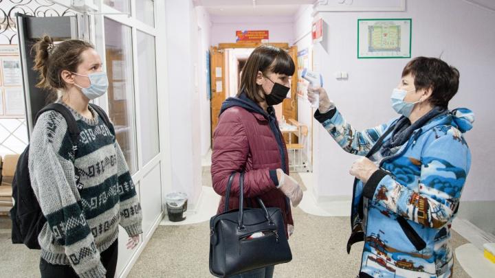 Явка на голосование по поправкам к Конституции в Челябинской области выросла до 62 процентов