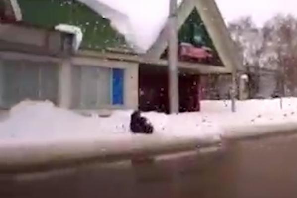 Снег с остановки свалился на женщину