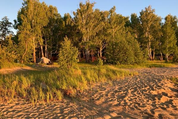 Пляжи на озере Увильды хорошие, но найти место для палатки очень непросто