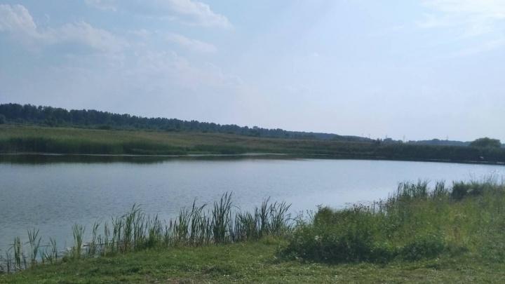Под Заводоуковском в реке утонул четырехлетний мальчик