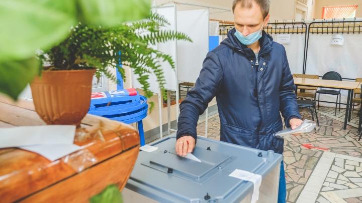 Выборы в Госдуму будут проходить три дня. ЦИК обещает, что голосовать на пеньках не придется