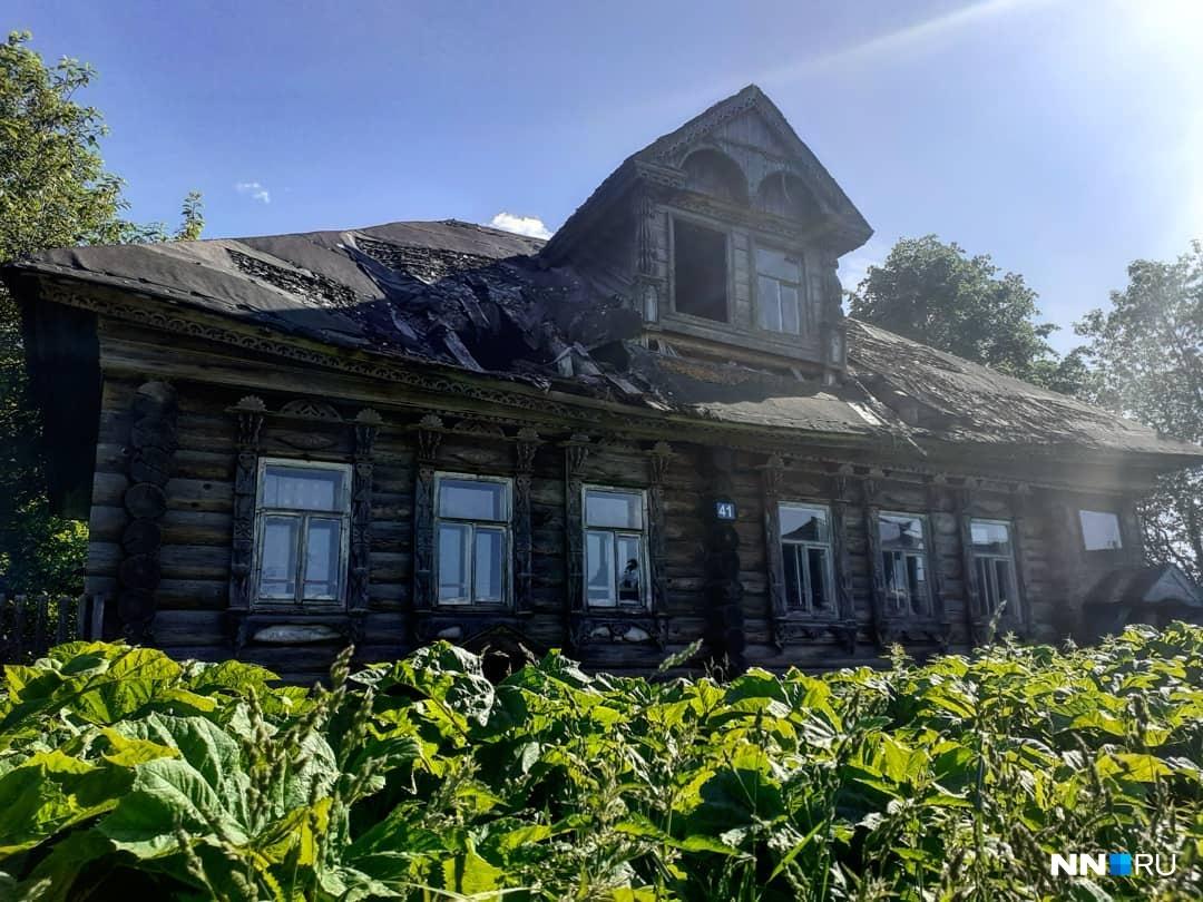 Заросли борщевика охранят старый дом от мародеров лучше всяких заборов