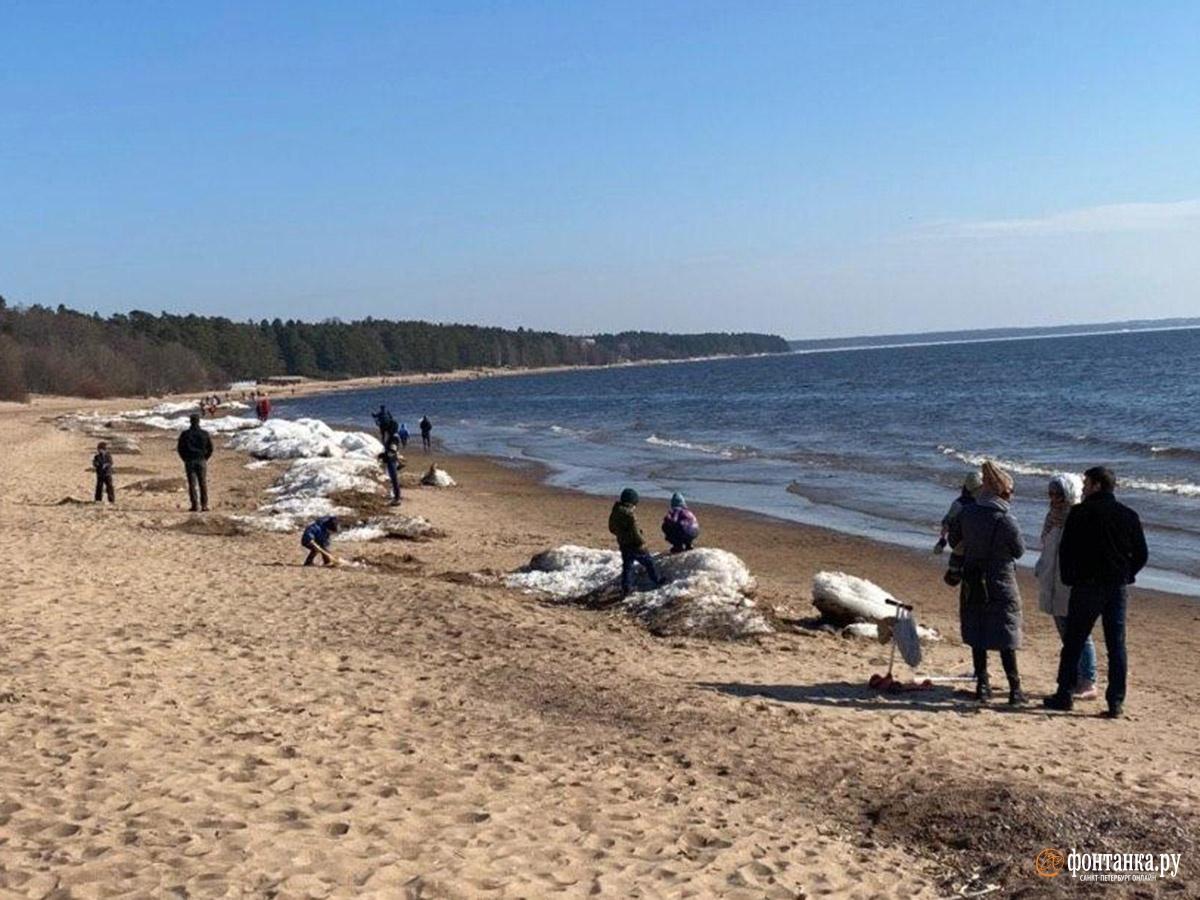 Побережье Финского залива в районеРепино-Комарово-Зеленогорска