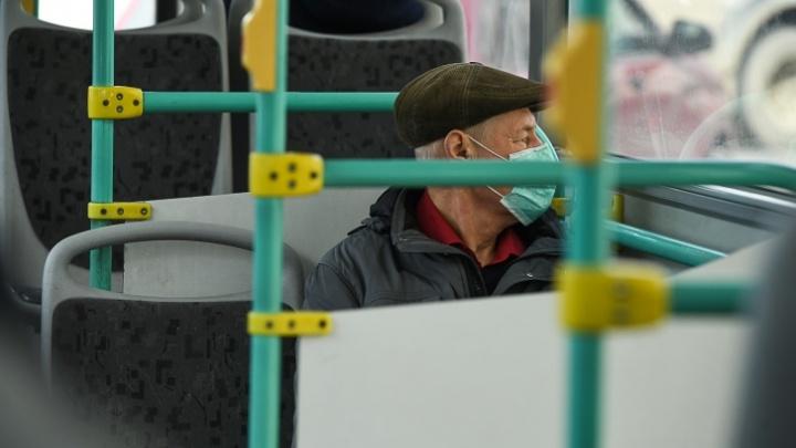 Бойцов Росгвардии отправят проверять, носят ли маски в трамваях и автобусах Екатеринбурга