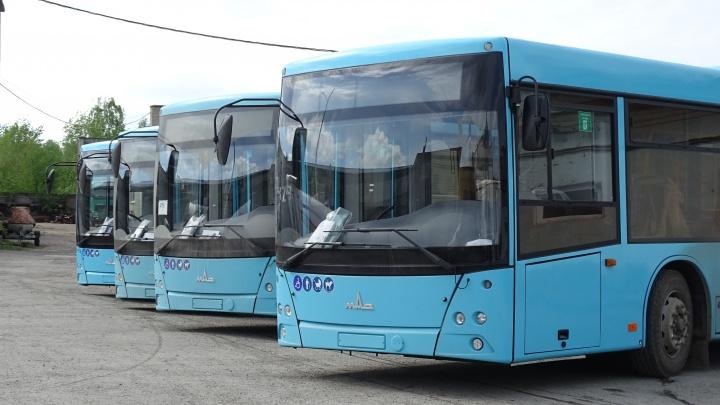 В Перми определили перевозчиков крупнейших автобусных маршрутов на 5 лет
