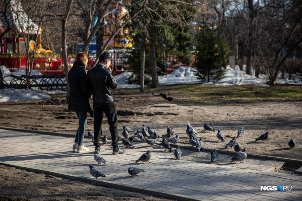 Режим самоизоляции в России продлится до 30 апреля