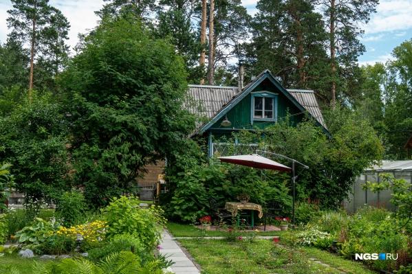 Лето — то самое время, когда не имеющие дач новосибирцы завидуют счастливым владельцам домиков и газонов