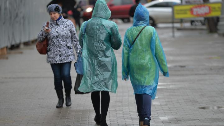 Дожди и заморозки: спасатели объявили штормовое предупреждение в Свердловской области