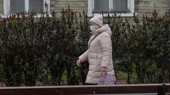 За сутки в Архангельской области выявили 351 случай COVID-19. Информация регионального оперштаба