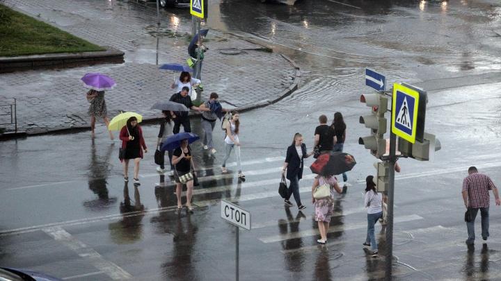 В Омской области ожидаются сильный ветер и дождь