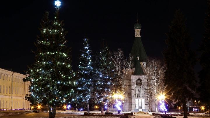 Нижегородский Роспотребнадзор не рекомендовал отмечать праздники вокруг уличных елок