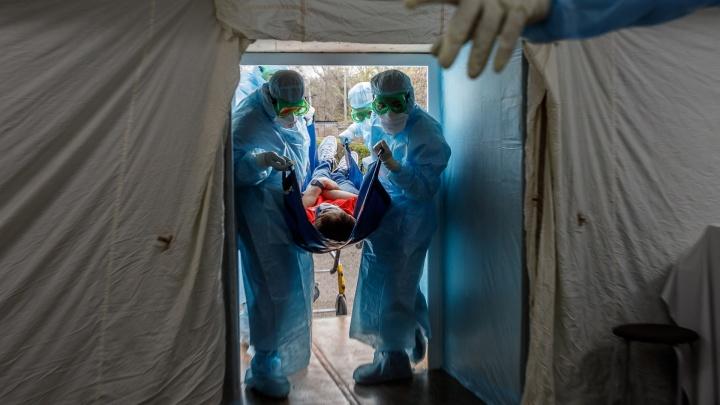 Октябрьский район пока не сдается: география распространения коронавируса в Волгоградской области