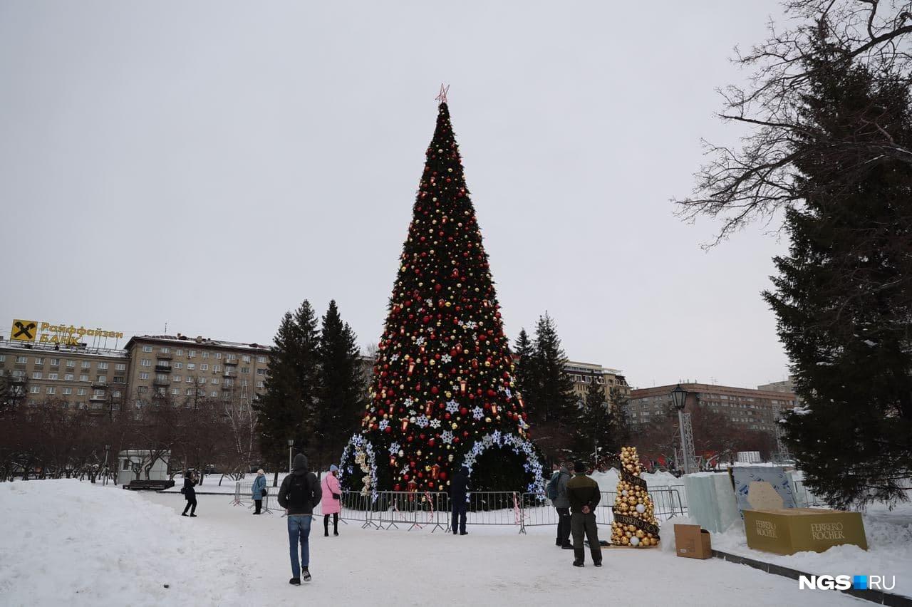 Смотришь на елку — и сразу появляется новогоднее настроение