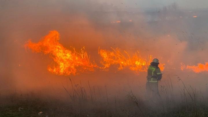 Что известно о пожаре на левом берегу Дона, где погиб спасатель