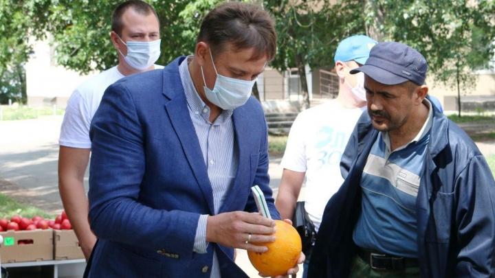 Челябинский депутат собрался поднять «нитратный» вопрос в Москве. А вы уже покупали дыни и арбузы?