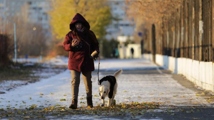 В Омской области перед похолоданием столбик термометра поднимется до +11 градусов