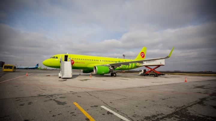 В Толмачёво задержали авиадебошира — он обругал полицию, стюардесс и других пассажиров