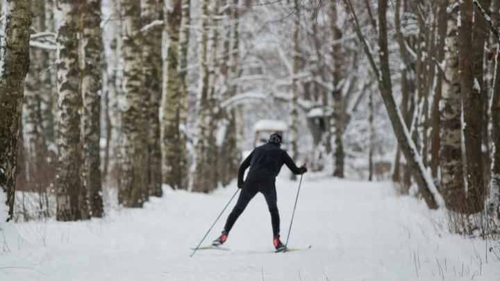 В Ярославле откроются бесплатные лыжни: адреса