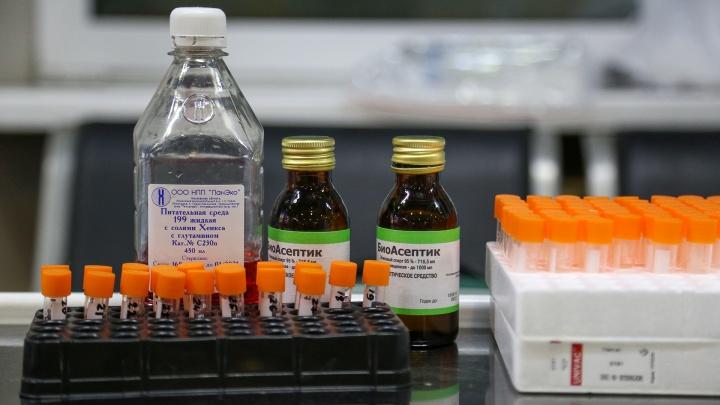 «География распространения растет»: в Башкирии откроют еще одну лабораторию для выявления коронавируса