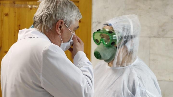 В Архангельской области за сутки выявили 263 случая коронавируса