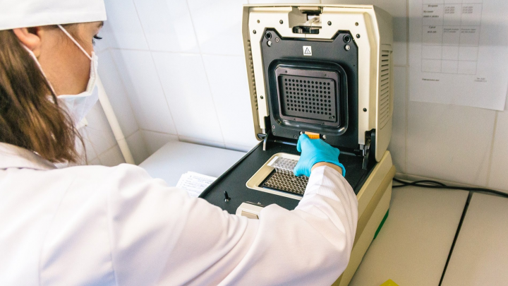За последние сутки в Прикамье коронавирус подтвердился у 55 человек