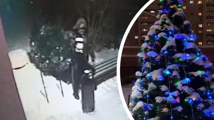 «Вырвали вместе с гирляндами». На Ботанике неизвестные украли со двора новогоднюю елку