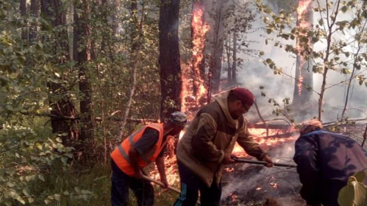 Пожар в заповеднике Башкирии добрался до деревни. Жители забили тревогу