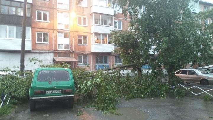 Ураганный ветер прошелся по Ачинску и повалил деревья