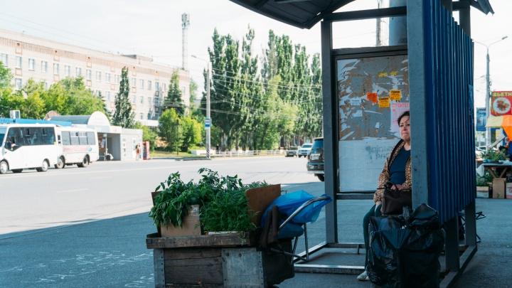 В «Яндекс.Картах» стали публиковать расписание омского общественного транспорта на месяц