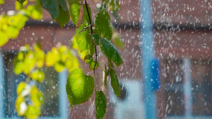 Жара отступает: какая погода ждет ростовчан на неделе
