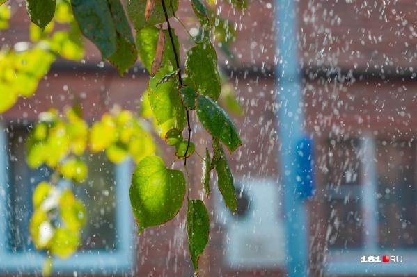 Неделя в Ростове будет теплой, но временами возможны дожди