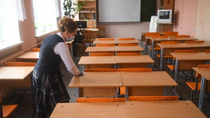 Вице-губернатор объяснил, в чем смысл перевода на дистант только учеников 6–11-х классов