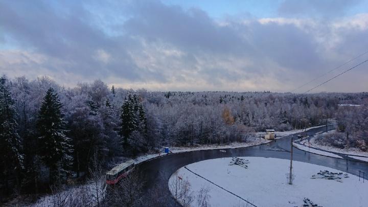Желтые листья и припорошенные ели: пермяки делятся фотографиями первого снега