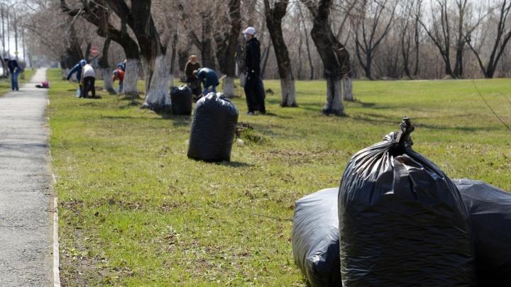 Из Кургана вывезли почти тысячу мешков мусора