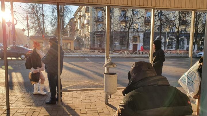 Новая беда: власти сообщили о массовом исчезновении урн с остановок в Ярославле