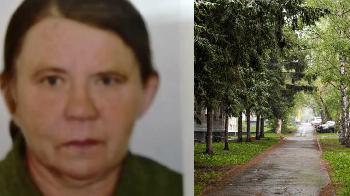 В Новосибирской области три дня назад бесследно исчезла женщина — волонтёры просят помощи в поисках