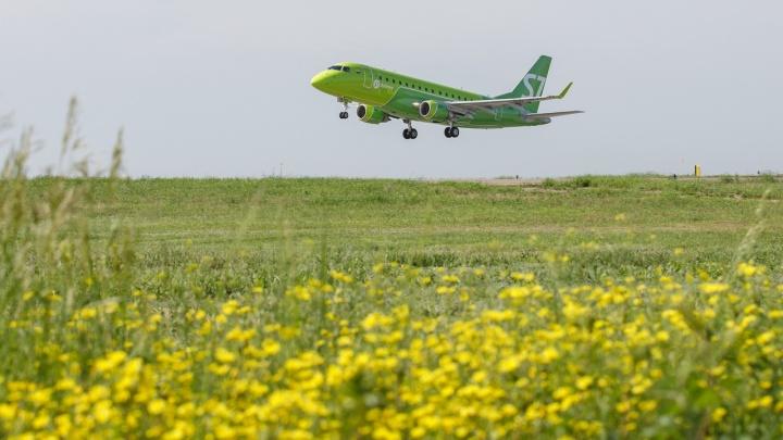 Волгоградцам обещали пятиминутный перелет в Новосибирск