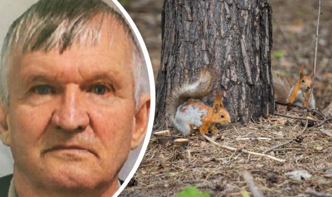Пропавший два дня назад грибник найден мёртвым в лесу под Новосибирском