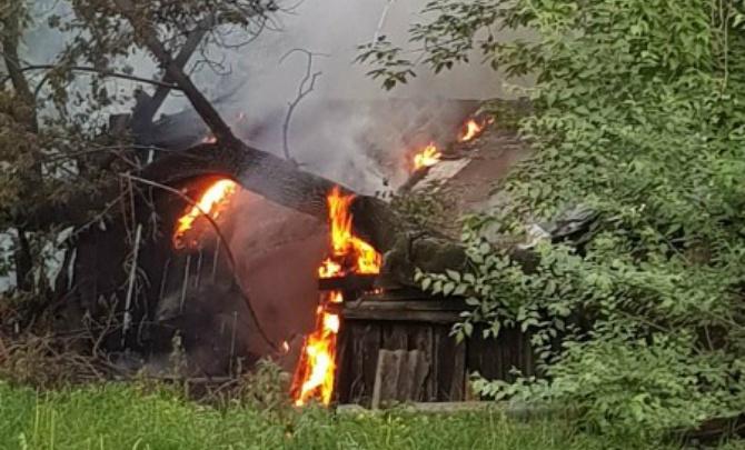 В Зауралье пожарным за неделю пришлось больше 40 раз выезжать на возгорания тополиного пуха