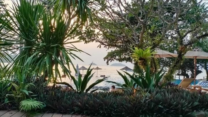 «Рейс просто пропал»: новосибирцы застряли в Таиланде без новостей о том, что случилось с их вылетом