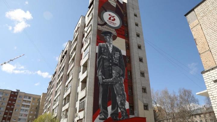 Стрит-арт с ветераном в Архангельске обошёлся в сумму более 1 миллиона рублей