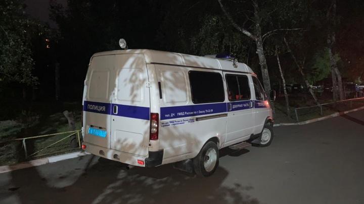 Мужчина с сайта знакомств: появилось видео с подробностями о нападении на женщину на Левом берегу