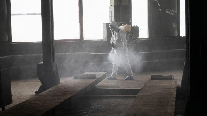Еще две смерти: коронавирус бьет страшные рекорды в Волгограде и области