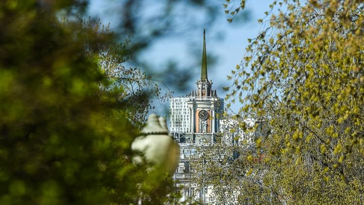 Город в зеленой дымке: любуемся Екатеринбургом, каким он бывает только раз в году